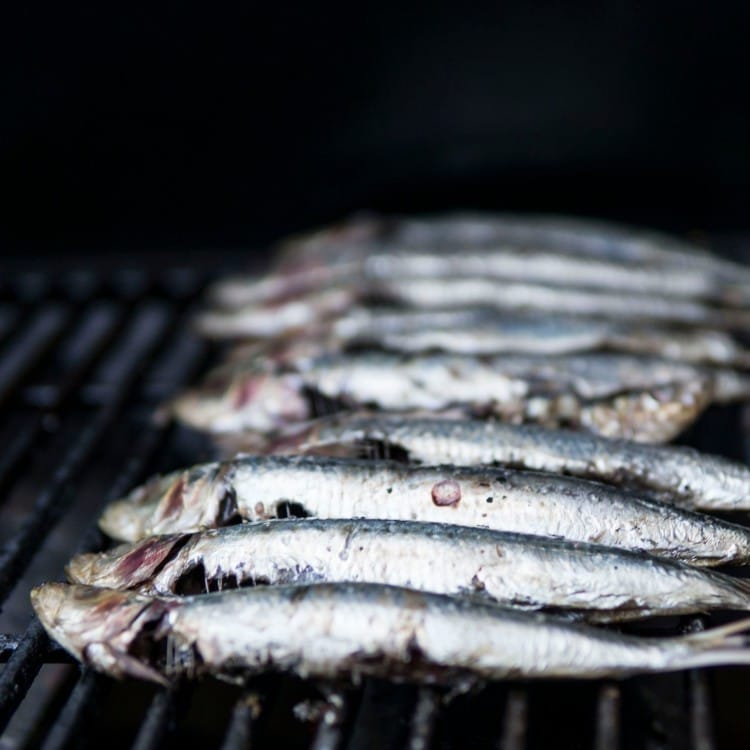 Sardines with bones rich in calcium for keto
