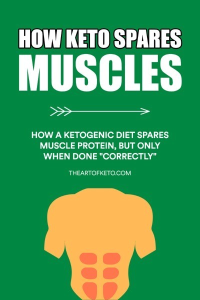 HOW KETO SPARES MUSCLE PINTEREST