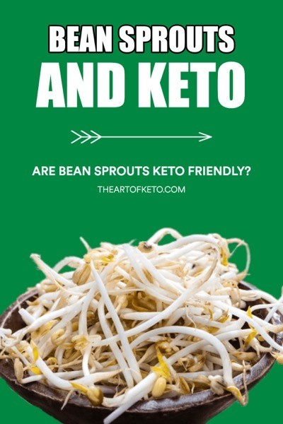 Are bean sprouts keto friendly pinterest