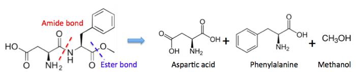 Aspartame digestion sodas have no calories