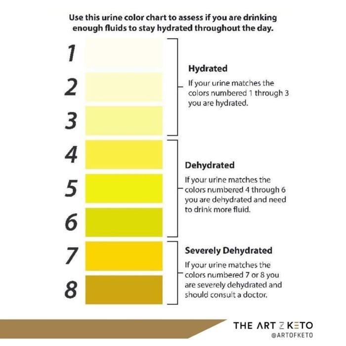 Donate blood hydration chart