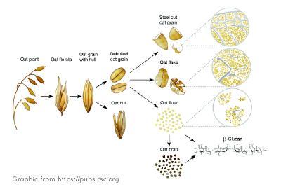 Oat fiber vs oatmeal vs oat bran keto
